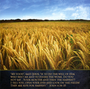 Golden wheatfiled with John 4:34-35