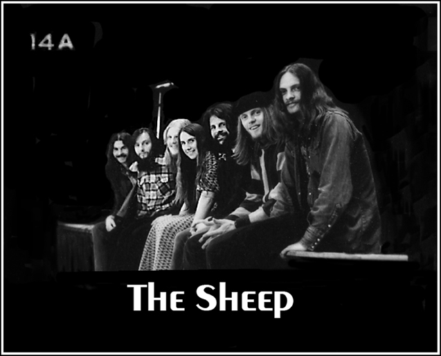 The band named The Sheep