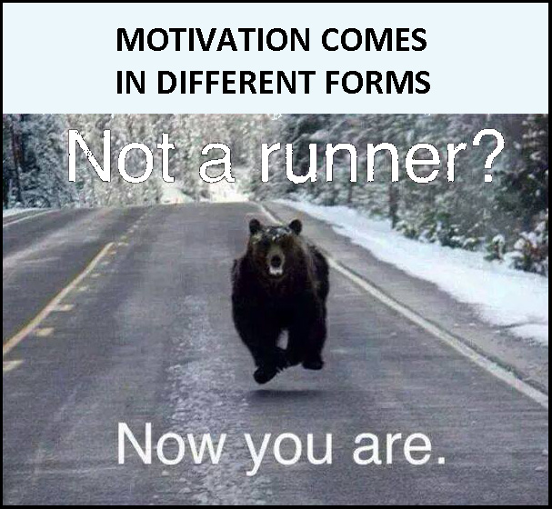 Bear running at viewer = motivation to run